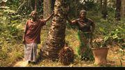 """"""" Amuka, l'éveil des paysans congolais """" : un documentaire porteur d'espoir"""