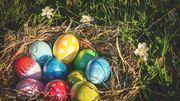 5 choses étonnantes sur les œufs