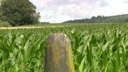 les champs de Romain Weiss traversés par la frontière