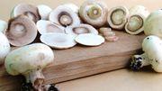 Comment nettoyer les champignons?