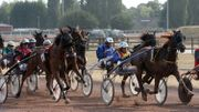 9 courses en fin d'après-midi avec des trotteurs pour animer l'Hippodrome de Wallonie