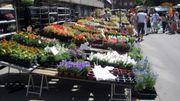 Le soleil sur le marché de Namur