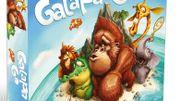 Galapa'Go et Renversante, les deux coups de coeur de la librairie Florilège