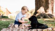 Le nouveau membre de la famille Kensington est poilu et aboie, le nouveau chien de William et Kate