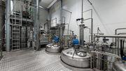NatExtra, le chaînon manquant de l'extraction végétale en Wallonie