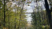 Entre la Hoge Kempen et Jemeppe toujours plus de nature !