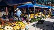 Une nourriture bio, locale et souvent végétarienne fait partie du quotidien à Vilcabamba.