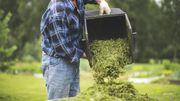 Recycler ses tontes de gazon, chez soi, c'est possible et utile