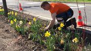 Les ouvriers communaux s'activent pour embellir la ville