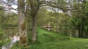 Grandeur Nature comme un reflet de Mirwart