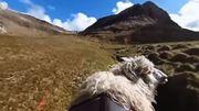 Des moutons pour immortaliser les îles Féroé à la place de Google Street View