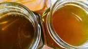 Le miel en cuisine, toutes les audaces sont permises