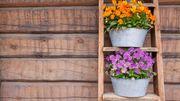 6 manières d'utiliser l'échelle en bois