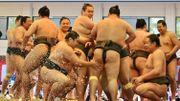 Choc des titans: Trump au combat de sumo