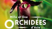 L'orchidée de retour dans les grandes serres du Jardin des Plantes à Paris