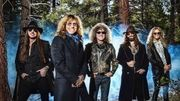 """Whitesnake : """"The Purple Album"""""""