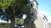 Tilleul devant l'église Saint-Feuillen