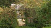 Les couleurs de l'arrière-saison dans le jardin de Ginny & Jon