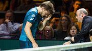 Goffin prend une balle dans l'œil et abandonne, Dimitrov en finale à Rotterdam