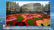 Bruxelles déroule son tapis de fleurs pour la 20ème fois !