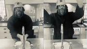 Liam Gallagher détourne les tubes d'Oasis en se lavant les mains