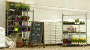 Chez Mise Ô Vert à Stavelot, on cultive sans pesticides