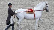 Unesco: l'équitation autrichienne parmi cinq nouveaux inscrits au patrimoine immatériel