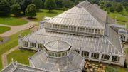 Entrez dans les coulisses de la Temperate House, la plus grande serre victorienne au monde...