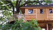 Ma nuit romantique dans une cabane nichée dans un arbre !