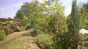 Le jardin de François, le professeur d'horticulture