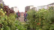 Les jardins sur les toîts, un concept qui cartonne!