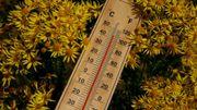 Normales de saison: que signifie vraiment ce terme météorologique?