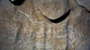 Des peintures rupestres datant de plus de 12.000 ans découvertes en Espagne