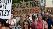 Des manifestants pour la sauvegarde de la forêt (juillet 2017)