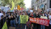 Amazonie: les manifestations pour sauver le poumon vert de la planète se multiplient