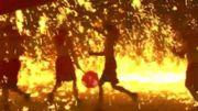 Chine: les images spectaculaires d'une danse du dragon au milieu du fer fondu