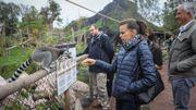 Stéphanie de Monaco était à Pairi Daiza ce jeudi pour visiter son filleul, l'éléphanteau Ta Wan