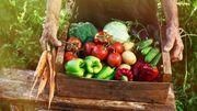 """Un nouveau label pour les fruits et légumes frais: """"Zéro résidu de pesticides"""""""