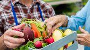 Un atelier à la ferme pour jeter moins de légumes