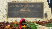 """USA: nouvel arbre pour George Harrison après une invasion de... """"beatles"""""""