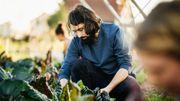 Ces 3 applis feront de vous le meilleur jardinier de votre quartier