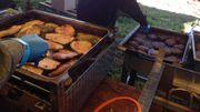 La viande vient de producteurs locaux