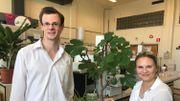 Le professeur Aurore Richel, chercheuse à Gembloux Agro-Bio Tech (ULiège), et Thomas Berchem, doctorant, étudient la lignine