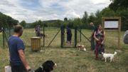 Un parc à chiens à Aywaille: pour pouvoir les laisser courir sans laisse