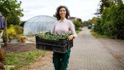 Des jardineries vous livrent à domicile