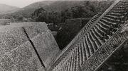 L'inspiration mexicaine de Josef Albers s'expose au Guggenheim de New York