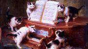 Les chats et la musique classique, une affaire qui ronronne