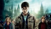Magique : Harry Potter rejoint Netflix