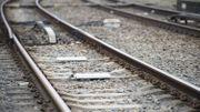 Foyers d'incendie sur la ligne ferroviaire 166: aucun dégât au réseau au final