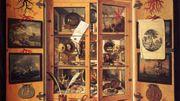 Les cabinets de curiosités, pour découvrir en s'émerveillant